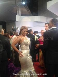 On the red carpet Casandra Awards 2012