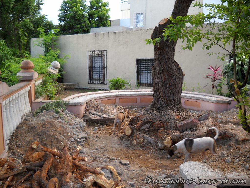 Plaza Pellerano Castro - Parque Rosado annex. Removing roots. August 2, 2013