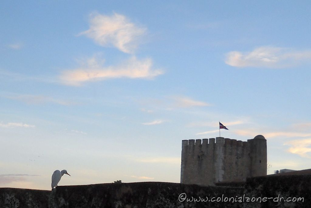 The birds beak and the Dominican Republic flag are pointing the same direction at Fortaleza Ozama