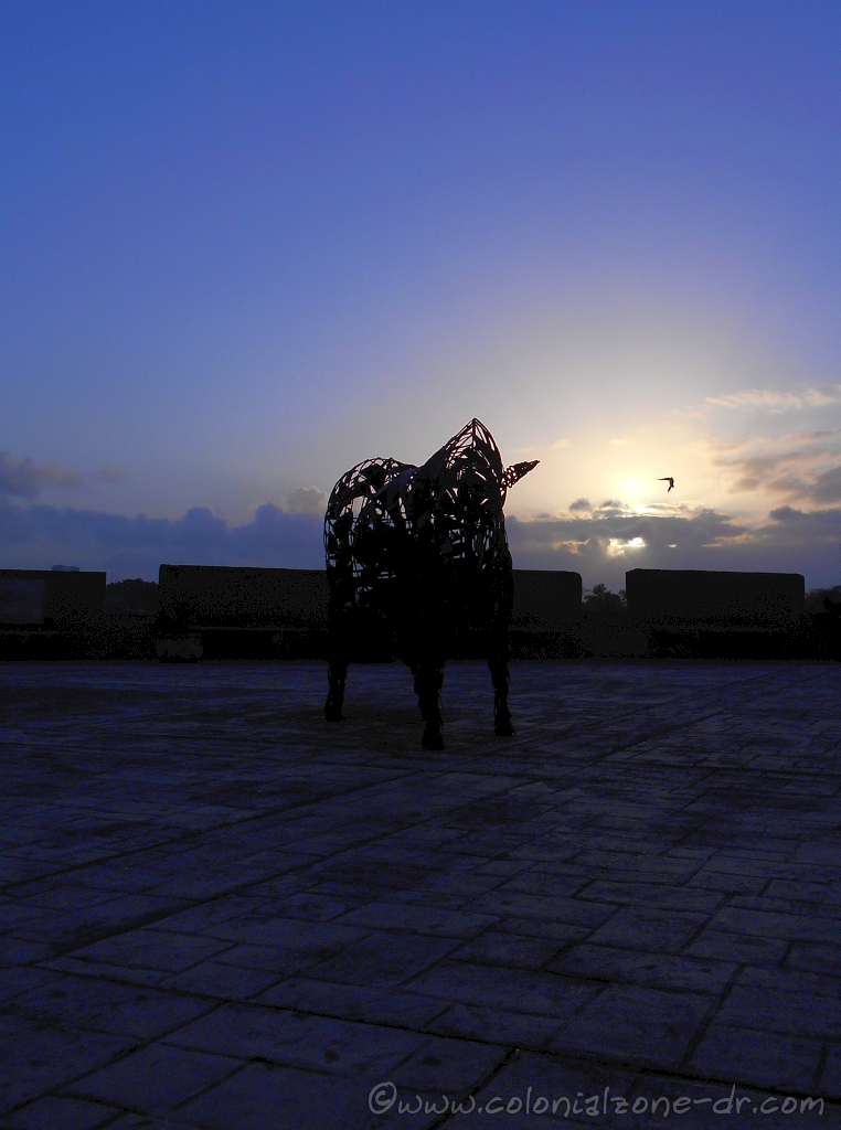 The bull at the Plaza Reloj de Sol at  6:30AM