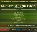 sunday-at-the-park-12-20-2015