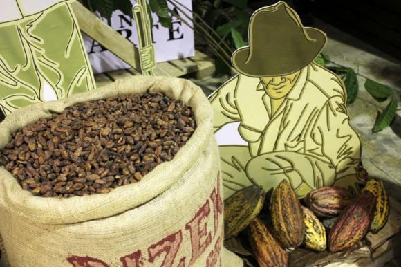 Festival del Cacao October 2 thru 5, 2014