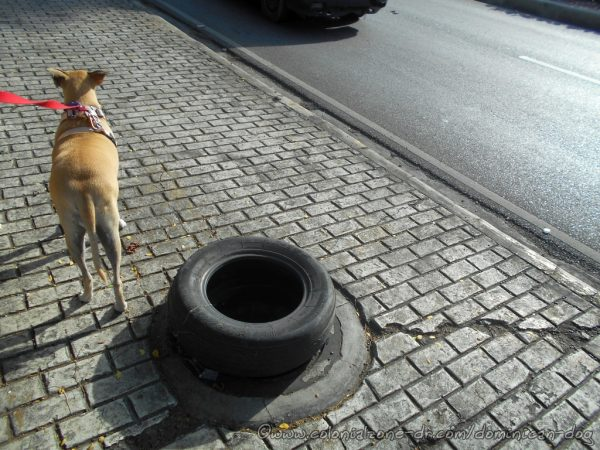 An old tire used to surround a manhole missing its cover in Dominican Republic.