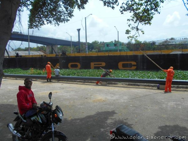 Puente Flotante is open while the Dirección General de Dragas move the lilies down towards the Caribbean Sea