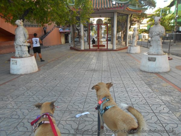 The Rat Statue on the left in the Plaza del Zodíaco in Barrio Chino, Santo Domingo.